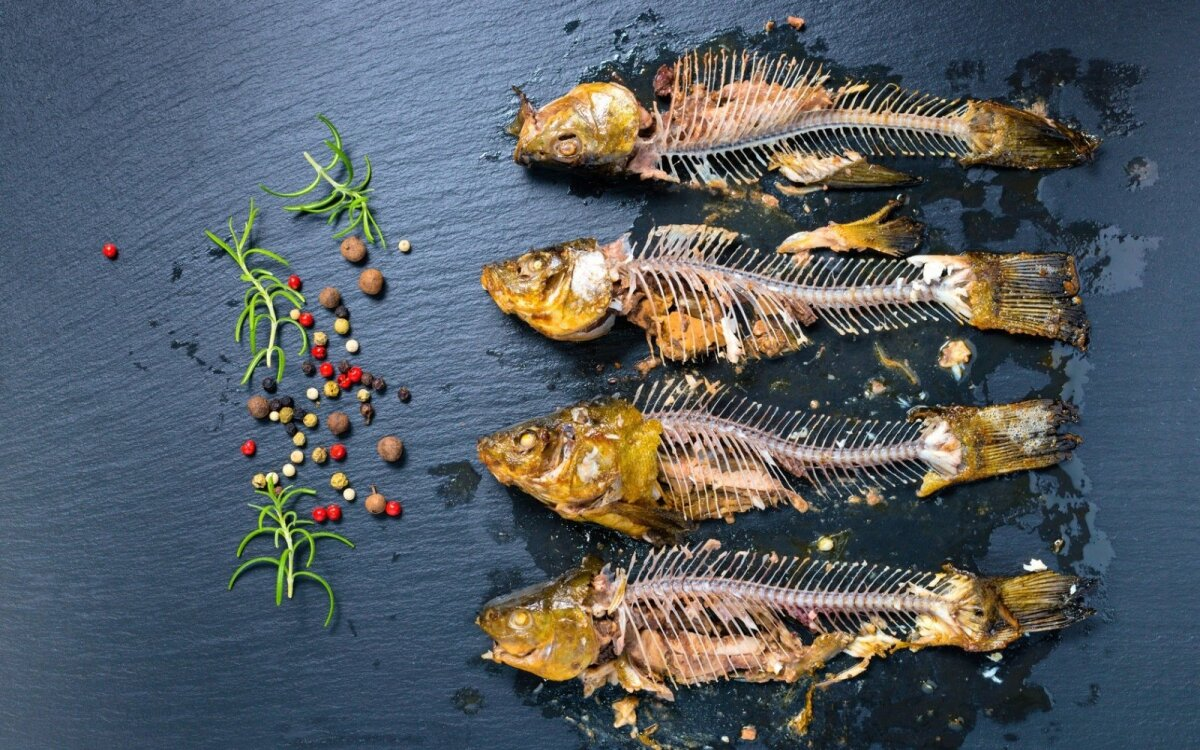 prekybos strategijos žuvis