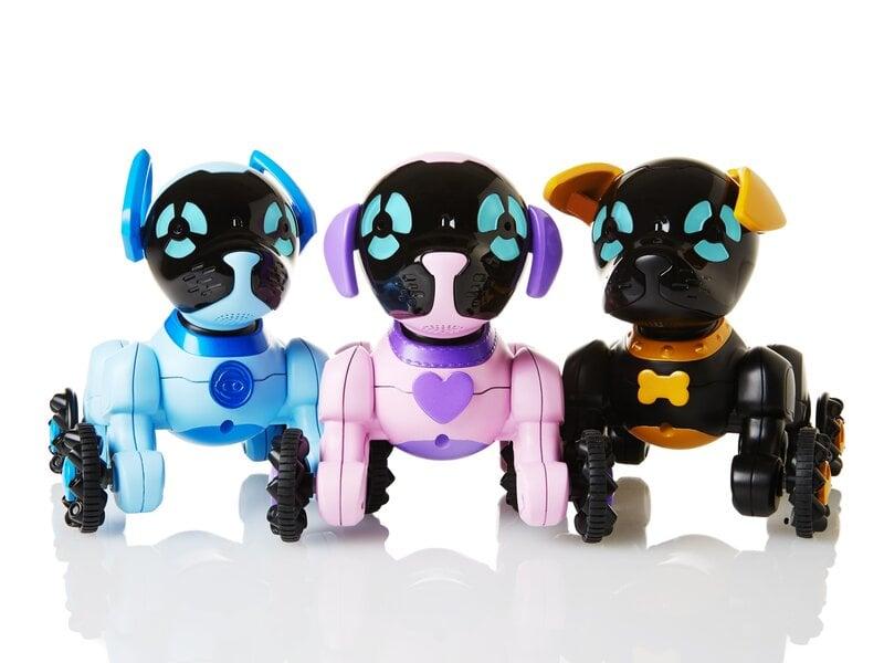 Iq Parinktis Dvejetainių Parinkčių Roboto Programa, Rasti dvejetainių parinkčių robotus