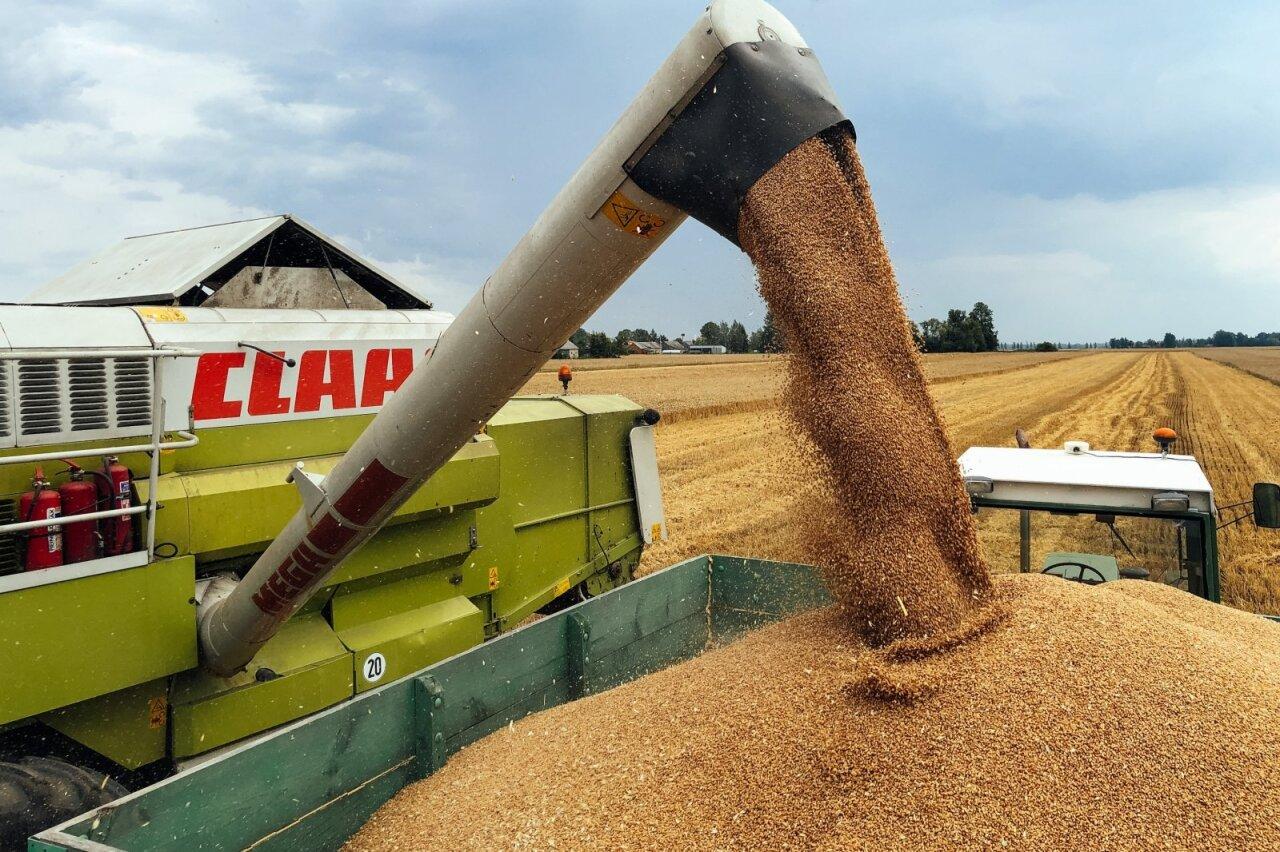Nepaisant COVID, lietuviškos kilmės prekių eksportas pernai augo - Verslo žinios