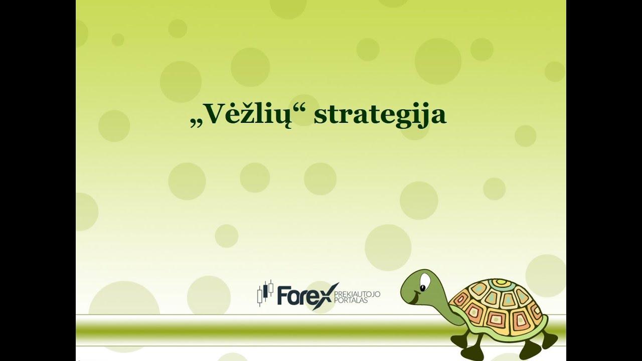 vėžlių prekybos strategijos)