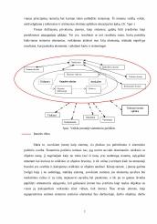 plėtojant sistemingas prekybos strategijas)