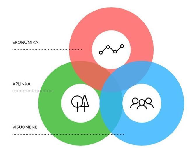 strategija įvairovei ir įtraukumui įgyvendinti)