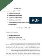 Kas yra indeksas dvejetainiuose opcionuose - Dvejetainių opcijų analizės programos
