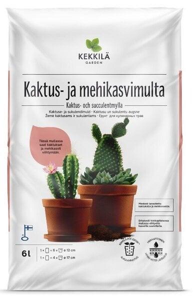 kaktusų prekybos sistemos)