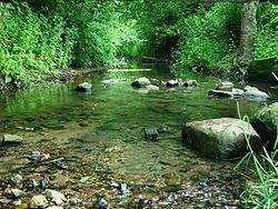 charles upės prekybos sistemos wiki