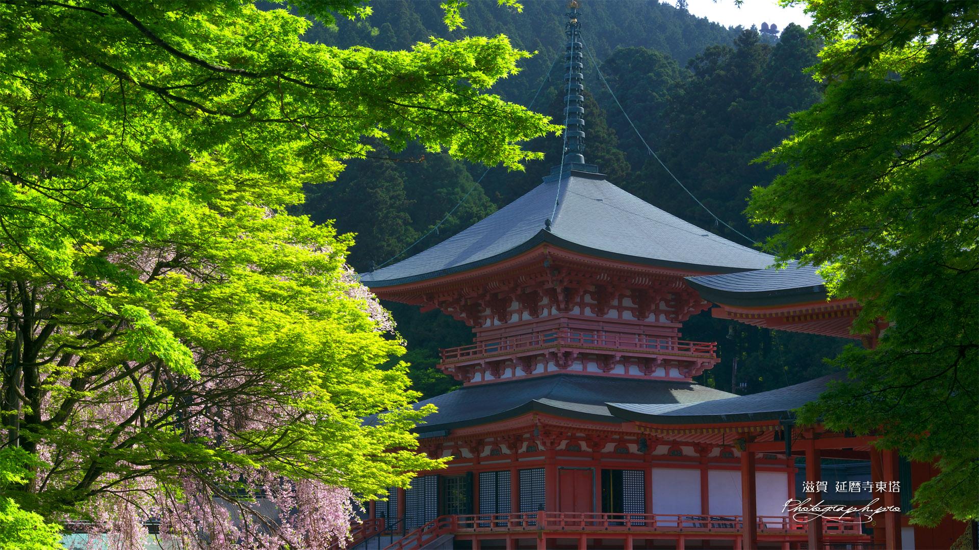 japonų šventyklos žvakidės