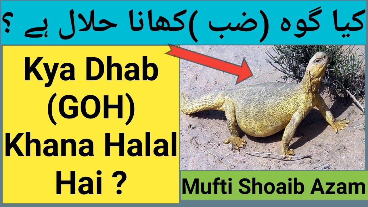 ar dvejetainiai variantai yra halal)