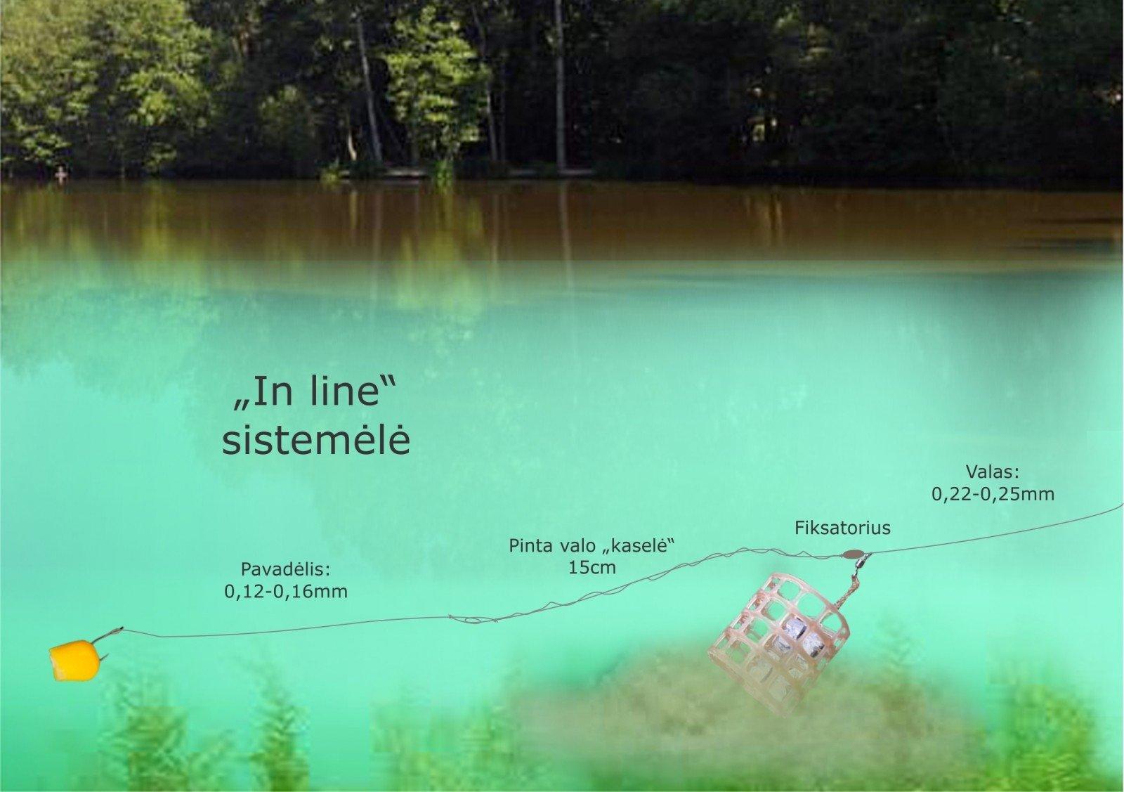 dugninės žvejybos prekybos sistema)