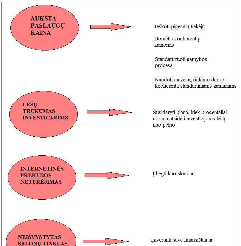 realus pasirinkimo galimybių lankstumas ir išteklių paskirstymo strategija)