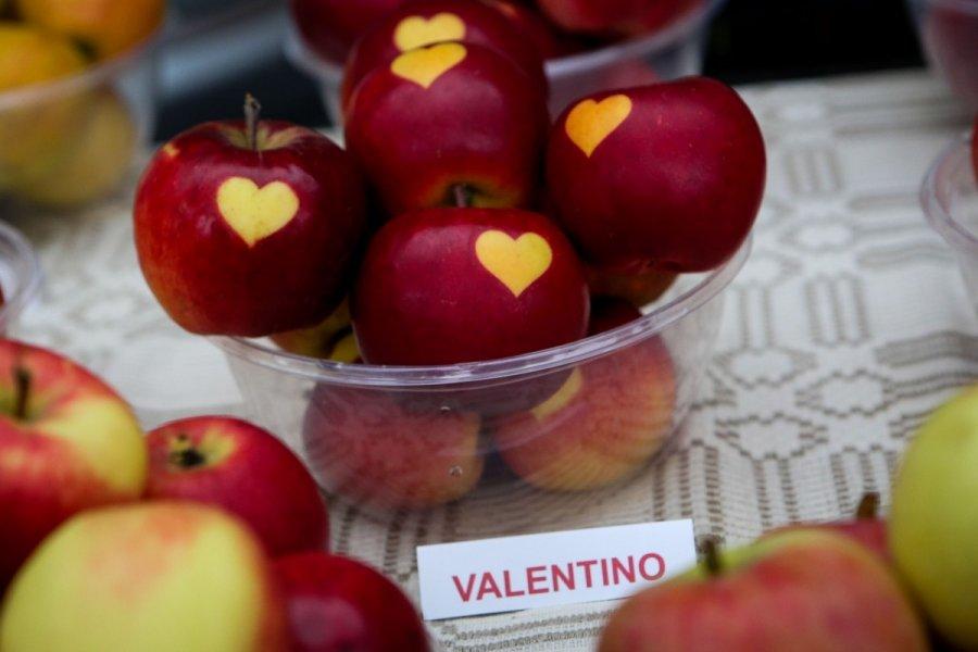 sudaryti opcionus obuolių atsargoms)