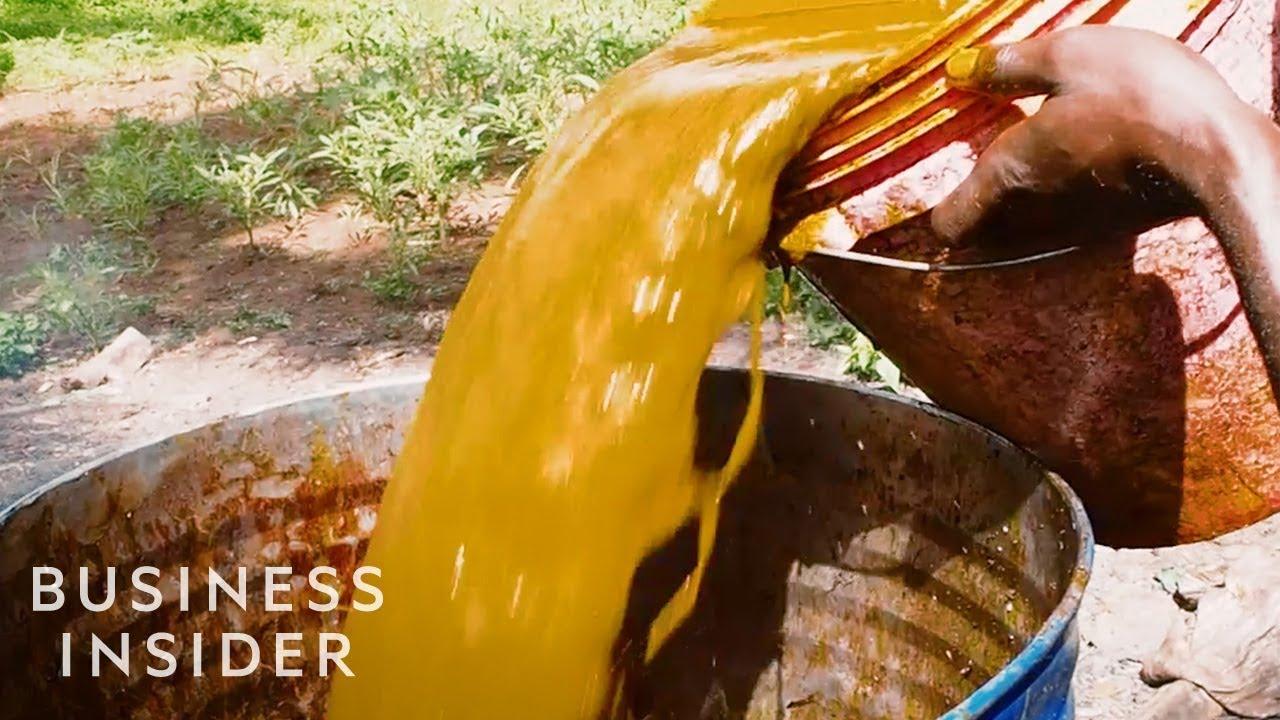 Žalios naftos ateities ir galimybių apžvalga - Žinios