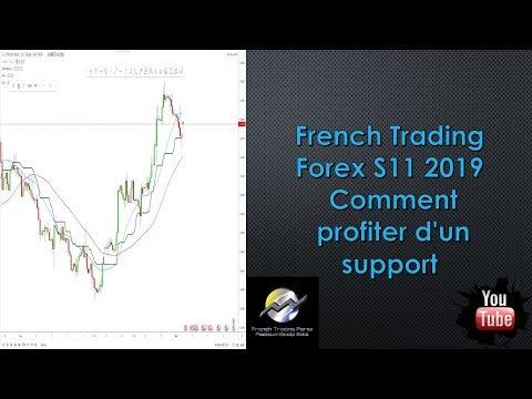 forex profiter v)