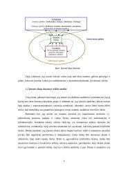 plėtojant sistemingas prekybos strategijas