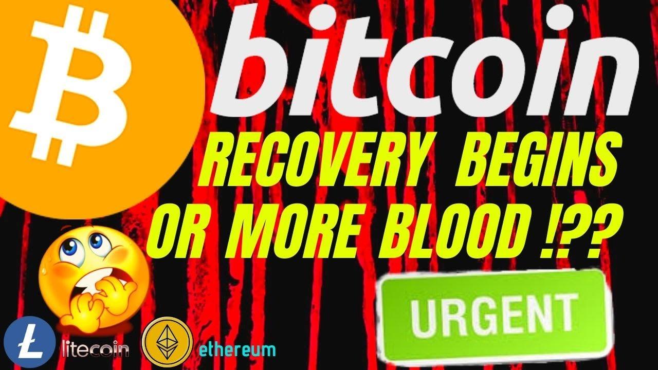 investuoti į litecoin ar bitcoin