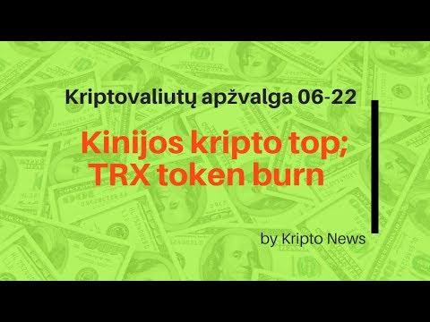 kripto puodo investicija