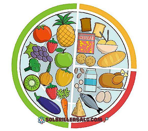Maisto sistema : nuo gamybos iki atliekų — Europos aplinkos agentūra